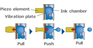 Piezo Printhead Printer Setup